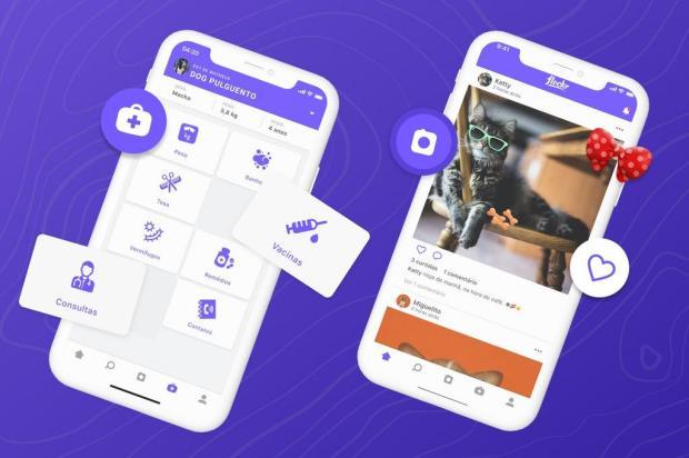 App promove doações para entidades aliadas no cuidado aos bichinhos Divulgação / Divulgação/Divulgação